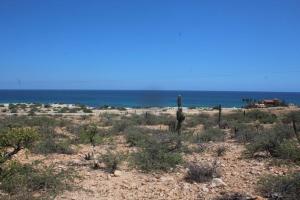 El Carrizalito, Punta Pescadero, East Cape,