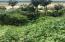 Poblado de la playita, Las Animas Altas, Lote 001, San Jose del Cabo,