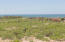 Views toward to ocean