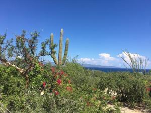 S/N, Vista Mar 2199, La Paz,