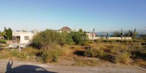 sin nombre conocido, playa comitan, La Paz,