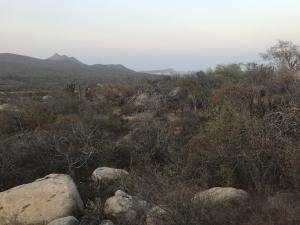ZACATON, Lot 11, Block 6 LAGUNA HILLS, San Jose del Cabo,