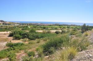 Lot 28, San Jose del Cabo,