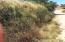03 MZA. T CALLE 13, PREDIO ANIMAS BAJAS, San Jose del Cabo,