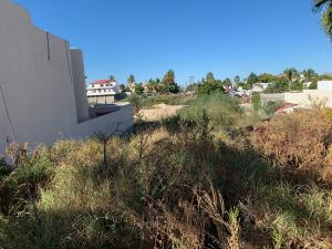 lot 17 Jarilla, lot Alvarez, San Jose del Cabo,