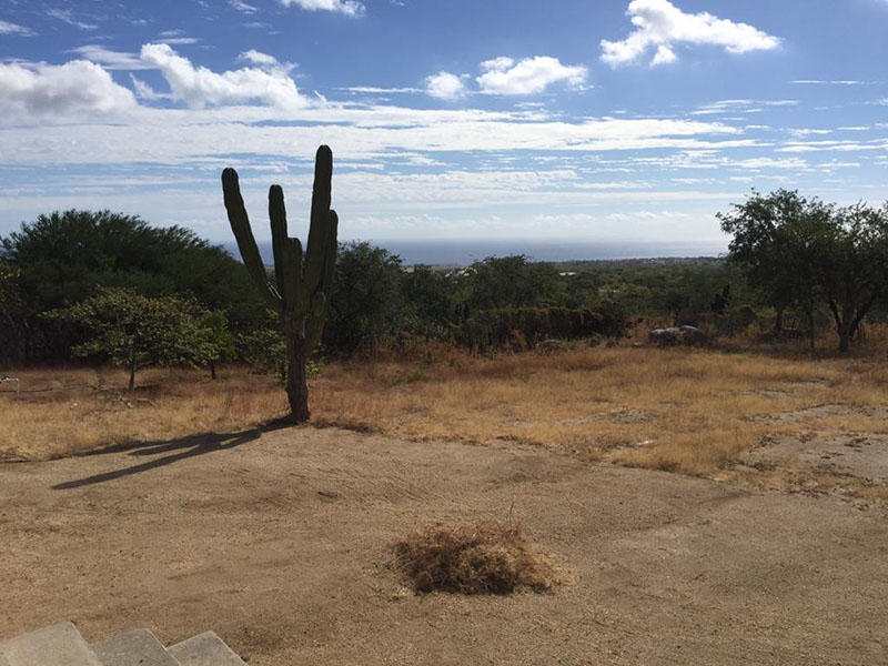 San Jose del Cabo, ,Land,For Sale,Parcela Fracc 4 y 5 Ejido,18-3073