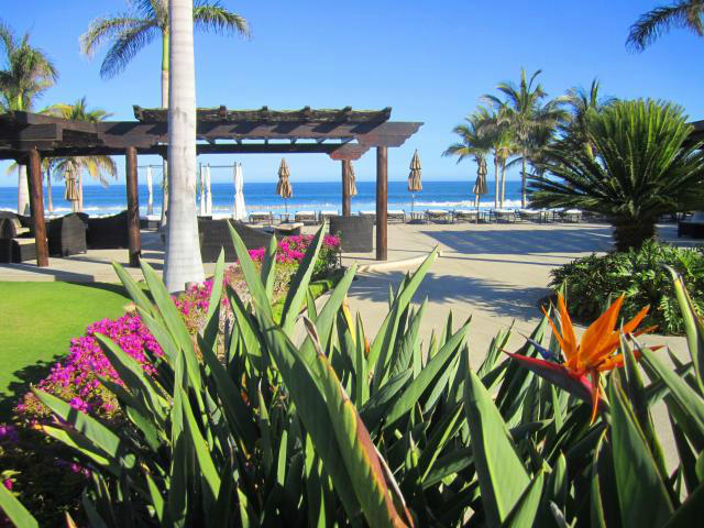 San Jose del Cabo, 3 Bedrooms Bedrooms, ,3 BathroomsBathrooms,House,For Sale,Pueblo,19-49