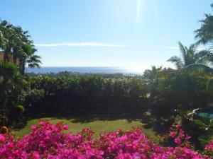 Paseo de Las Misiones, Alegranza, San Jose del Cabo,