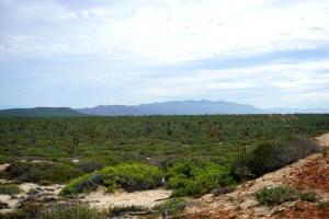 Turquoise Bay, La Paz,