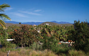 View from the top left of the lot towards Sierra de la Laguna mountain range.