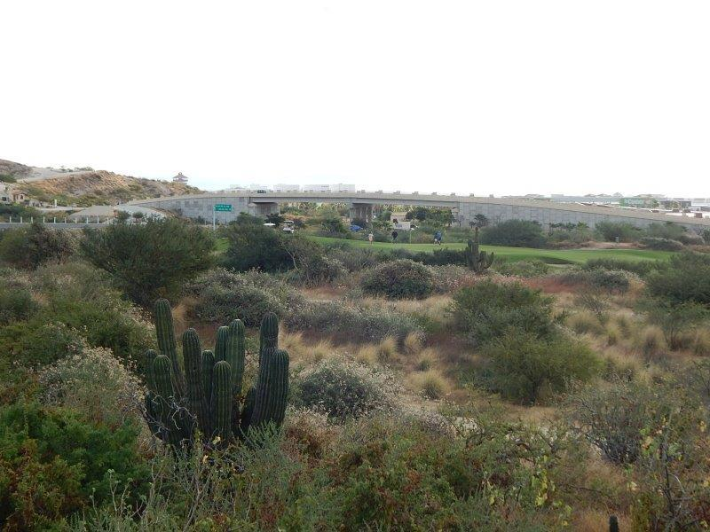 San Jose del Cabo, ,Land,For Sale,Vista Lagos,19-260
