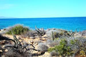 0421 El Cardonal Road, Las Tinas Beach Parcel, East Cape,