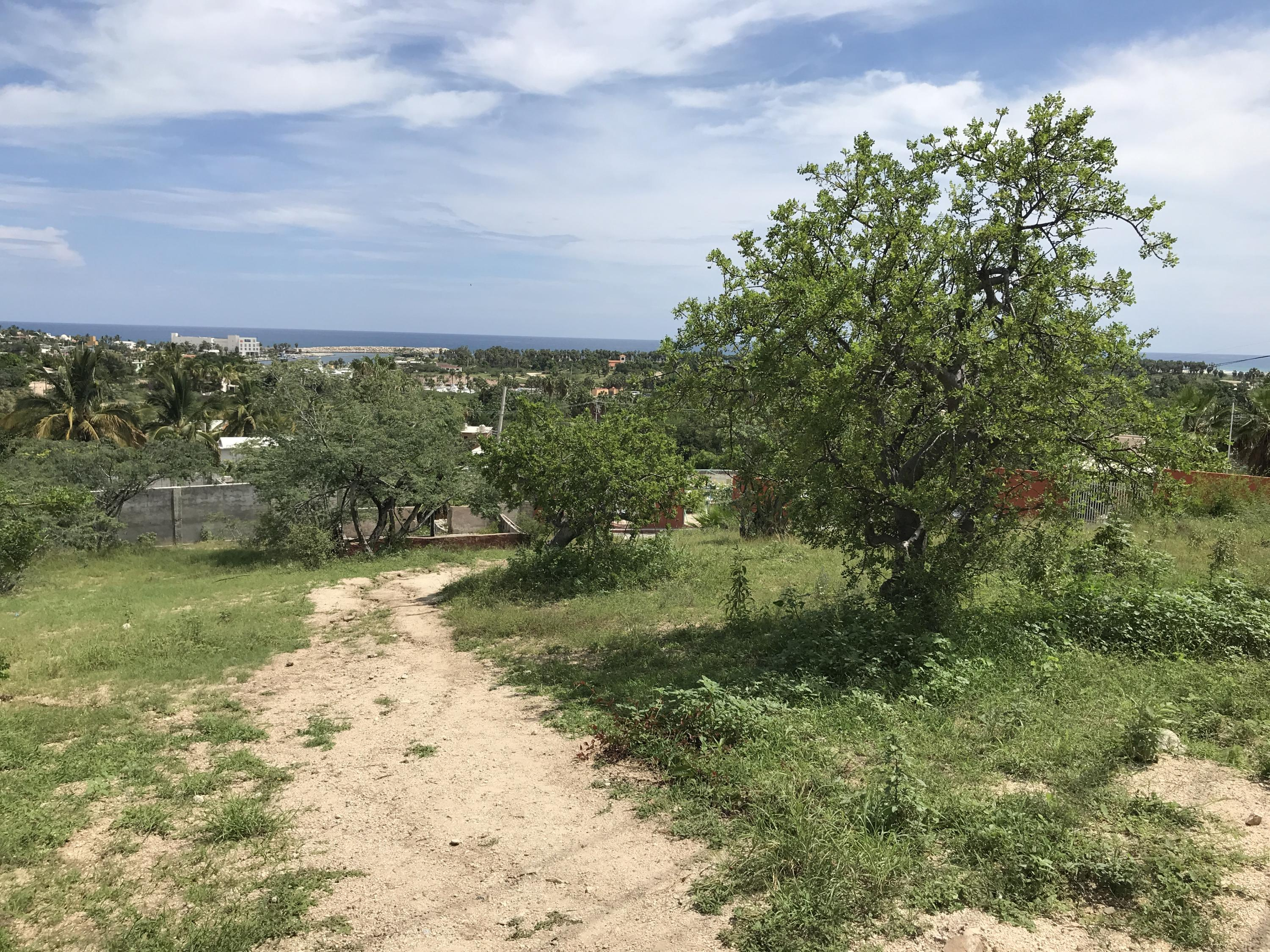 San Jose del Cabo, ,Land,For Sale,Manzana 3,19-513
