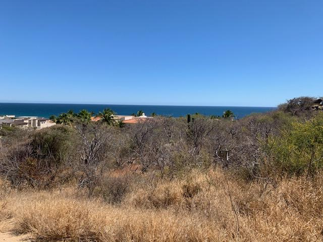 San Jose del Cabo, ,Land,For Sale,Padre Kino,19-773