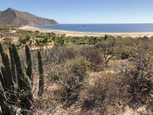 Los Frailes, La Huerta, I-9&10, East Cape,