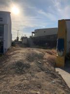 Transpeninsular Highway, MEZQUITE, San Jose del Cabo,