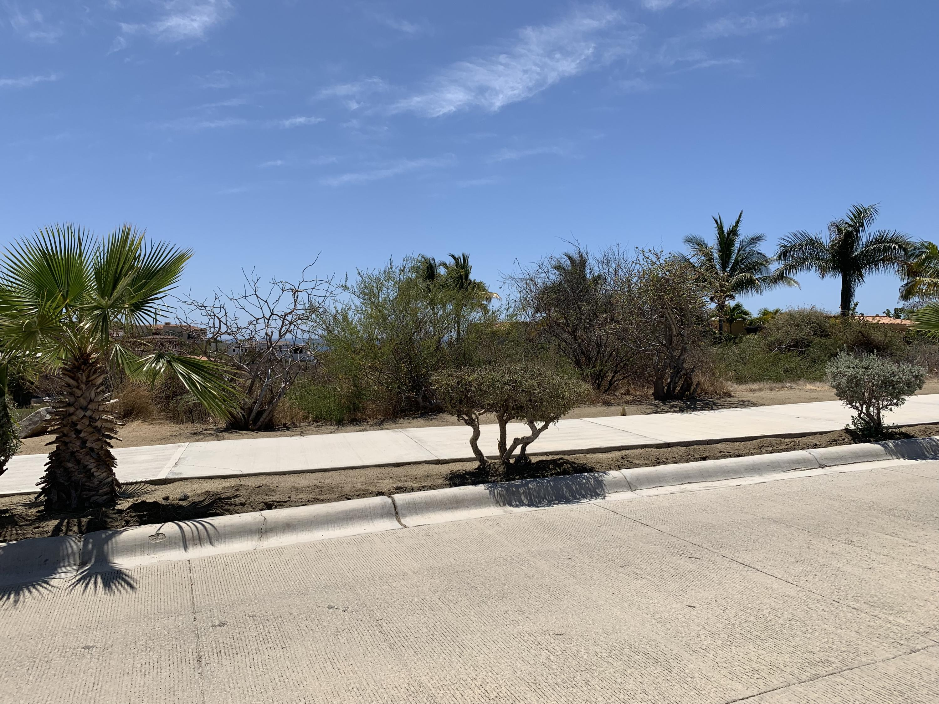 San Jose del Cabo, ,Land,For Sale,Calle Padre Sistiaga,19-969