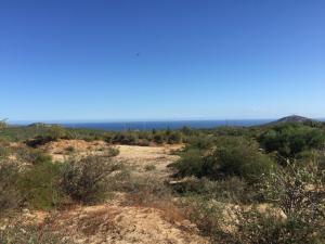 524 Z6 P1/10, El Cruce, San Jose del Cabo,