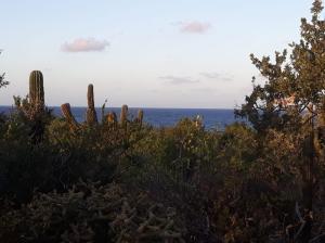 camino al cardonal, las tinas lote 12, East Cape,