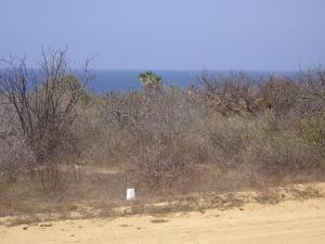 Calle Pez Espada Baja Sur, Las Lomas II, Mz 12,Lote 12, East Cape,