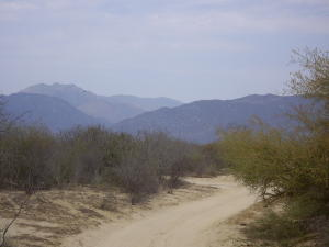 Mexico 1 BC S, Highway #1 Commercial Land, East Cape,