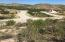Calle Oasis, Oasis Land, San Jose del Cabo,