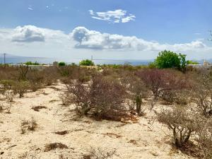 Isla Natividad, LUNETA LOOKOUT, La Paz,