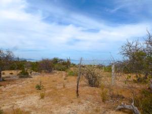 San Ysidro View Beach Road