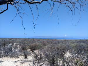 ., Land Bahia Turquesa, La Paz,