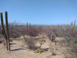 ., Land Land Turquesa...., La Paz,