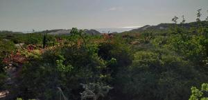 Fraccion 1 Lote 1, Lote Bredy, East Cape,