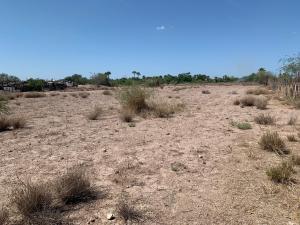 Prolongacion Baja California, Terreno Centenario Nelson, La Paz,