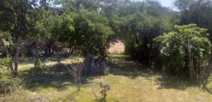 Subdelegacion Santa Catarina, Rancho Salvador, East Cape,