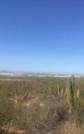 NO ONE, ALTOS TEZAL, Cabo San Lucas,