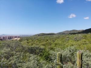 #228Z6 Ejido de Cabo San Lucas Parce, Lote Damiana, Cabo Corridor,