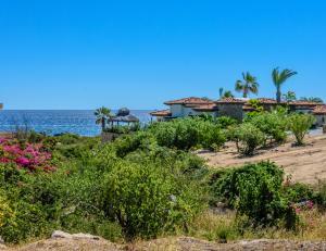 Punta Ballena, Las Residencias lot 309