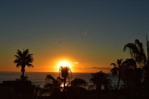 Incredible Views from the Terrace to the Sea Of Cortez. Enjoy Brilliant Sunrises with your morning coffee.