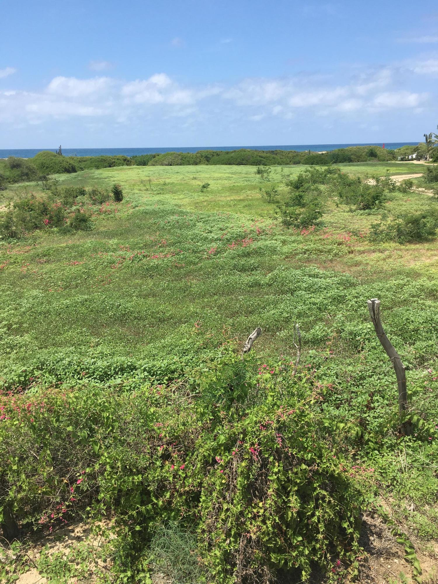 Pacific, ,Land,For Sale,ALMOST 1 ACRE BEACHFRONT LOT,20-4