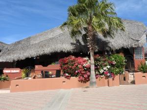 Bella Vista #5, Bella Vista Park, Cabo Corridor,