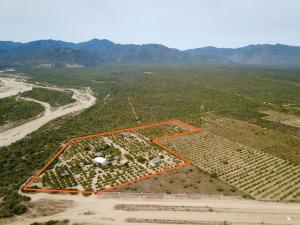 Rancho Mango Oasis