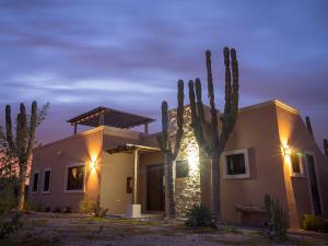 Palo de Arco & Calle 19, Casa Pitahaya, Vista Colinas, La Paz,