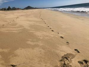 P331, OCEANFRONT PACIFLIVING DBL LOT, Pacific,