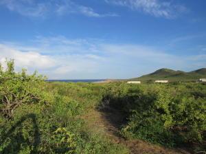 Paseo de las Haciendas, Pacific,