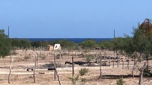 Terreno El Ancon
