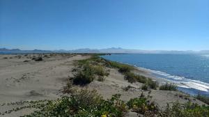 El Mogote-Hwy.La Paz-SnJuan C., El Mogote Lote 48, La Paz,