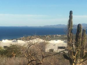 Amazing Ocean and Mountain View Lot!