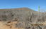 LOTE 2353 MZA 2, TERRENO CERRITOS, La Paz,