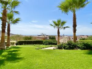 Copala 4104 Garden