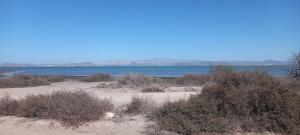 Paseo Costero Playa Centenario, Beach Lot for Sale in Centenar, La Paz,