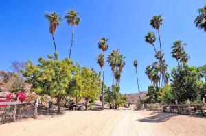 Fracc 2 Predio Los Alamitos, Rancho Parralito, San Jose Corridor,